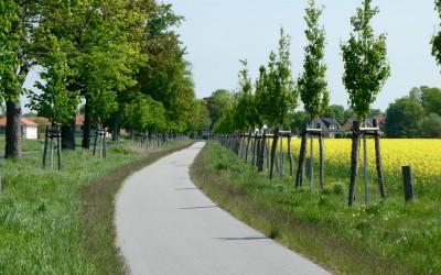Radverkehr fördern – Errichtung eines Radschnellweges Hoher Teltow entlang der Dresdner Bahn